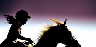 Silhouette einer Reiterin auf ihrem Pferd.
