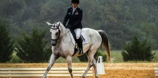 Reiterin und Pferd in der Reitbahn