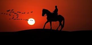 Die 9 ethischen Grundregeln für Pferdefreunde